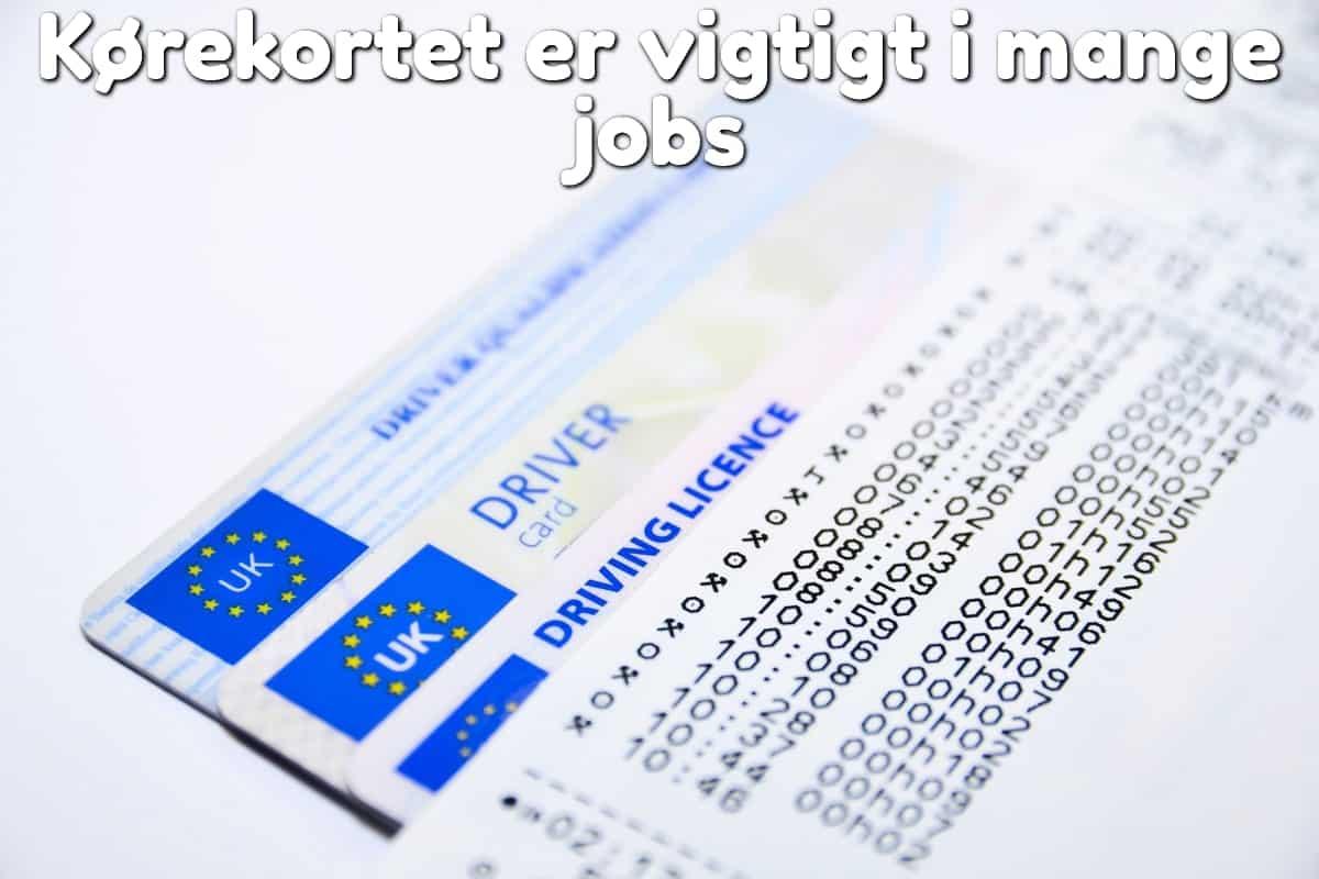 Kørekortet er vigtigt i mange jobs